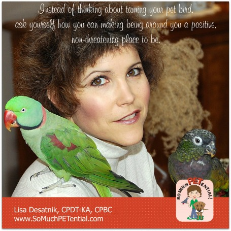 Thoughts on taming your pet bird by Cincinnati certified parrot behavior consultant, Lisa Desatnik
