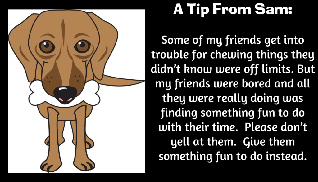 Sam's Dog Training Tip