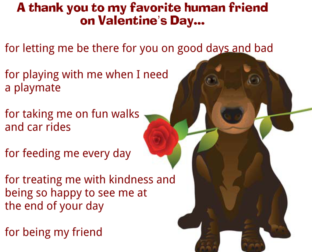Valentine's Day message from dog