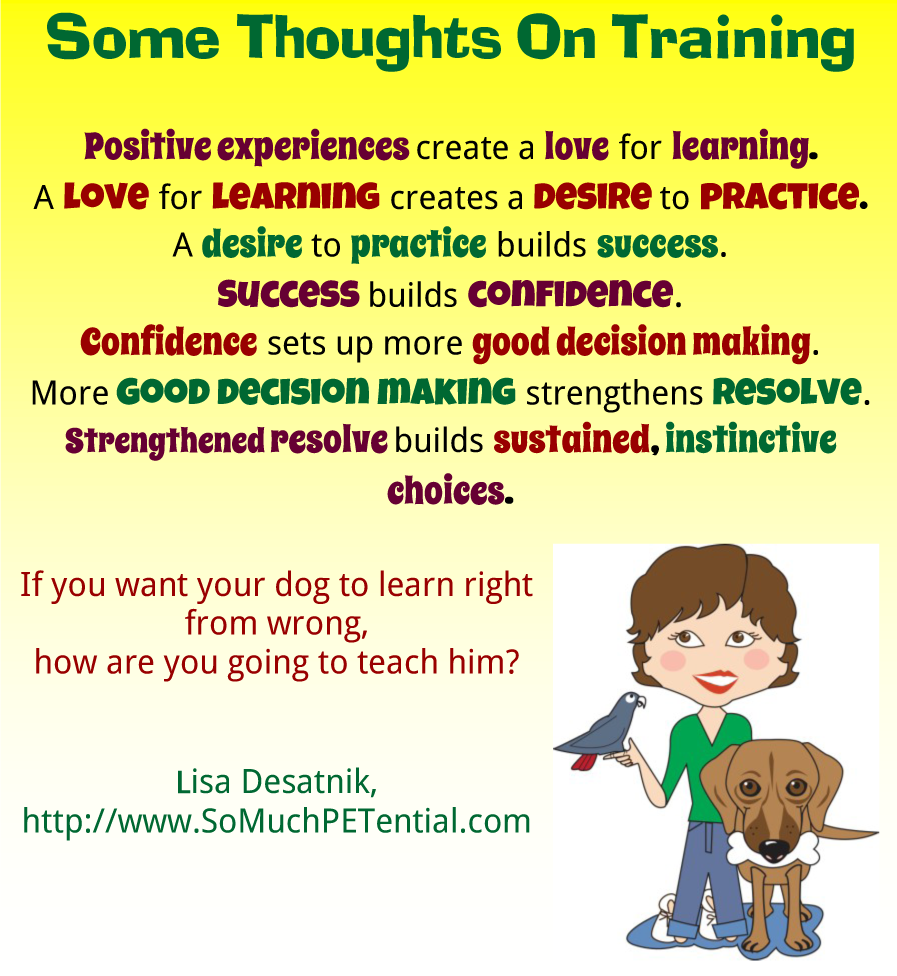 Some Thoughts On Dog And Pet Training