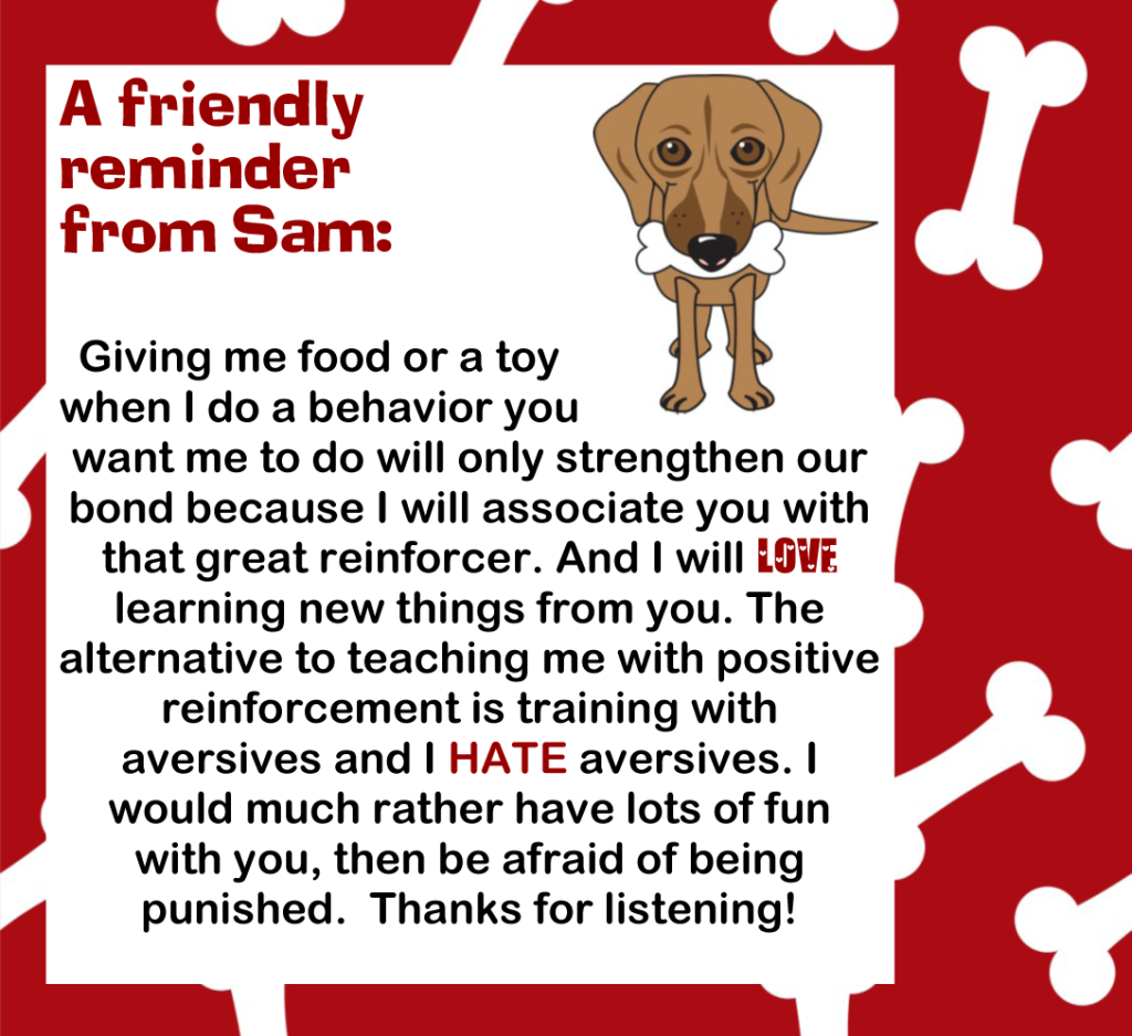 dog training tip with positive reinforcement