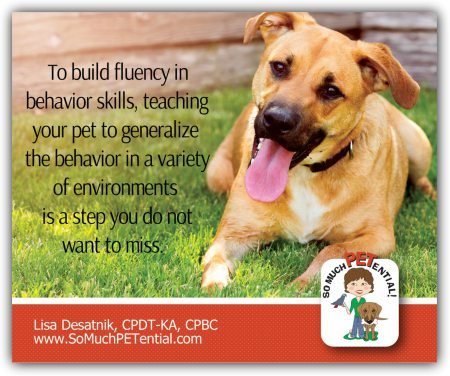 A dog training tip: to teach your dog fluency in behavior, teaching your dog to generalize the behavior in different environments is important.