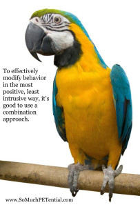 To effective change a pet behavior, it is good to use a combination approach.