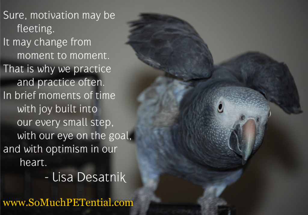 A quote on motivation in pet training