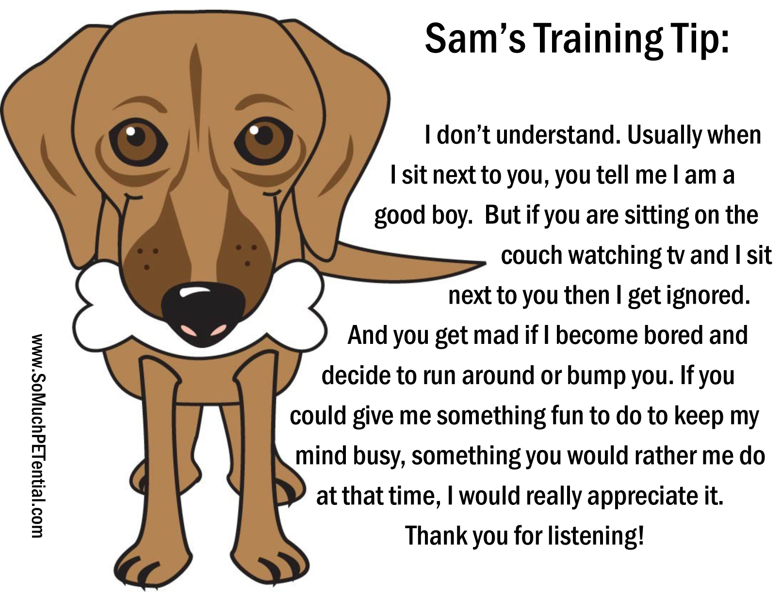A Dog Training Tip From Sam