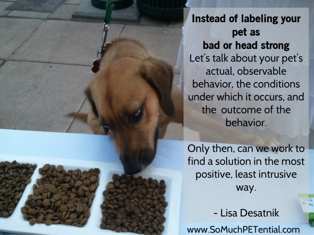 quote on labeling behavior by Lisa Desatnik