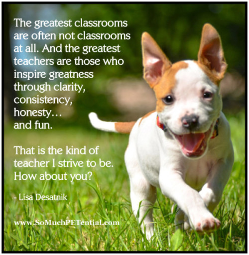 quote about effective dog training