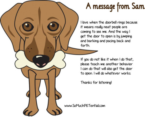 dog training tip - teaching dog calm greetings at the door