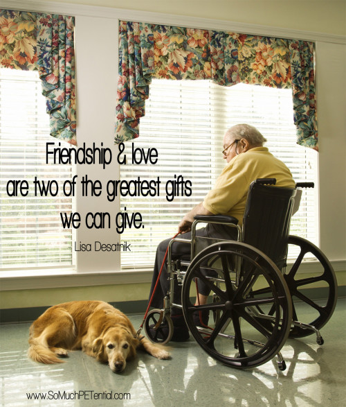 quote about dogs - friendship and love are two of the greatest gifts we can give