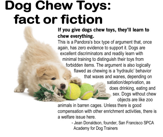 dog chewing behavior myth by Jean Donaldson