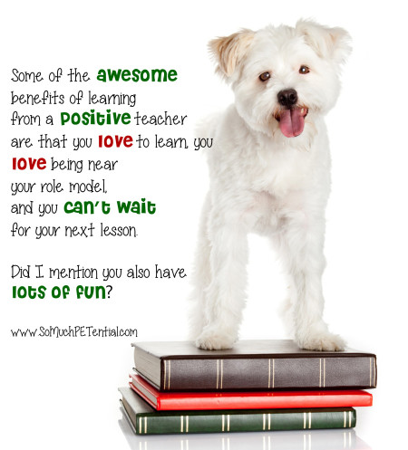 benefits of dog training with positive reinforcement