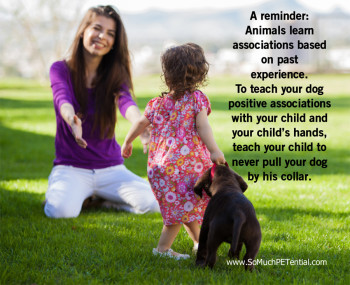 dog bite prevention tip for parents of kids from Cincinnati dog trainer Lisa Desatnik