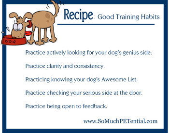 Dog Training Tips: A Recipe of Good Training Habits