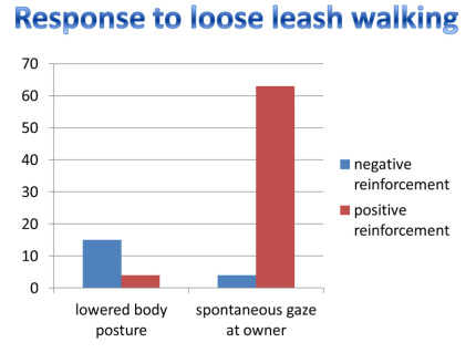 research on teaching a dog to walk on a loose leash with positive vs negative reinforcement