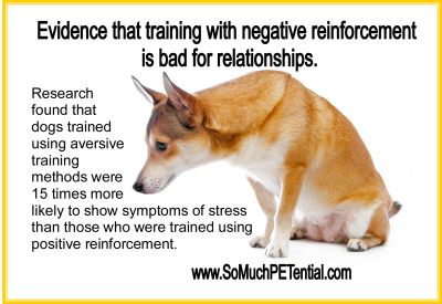 research on dog training with positive vs negative reinforcement