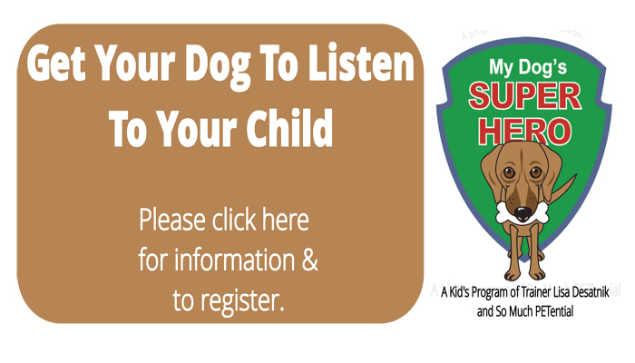 My Dog's Super Hero class for kids about dogs by Cincinnati dog trainer Lisa Desatnik of So Much PETential