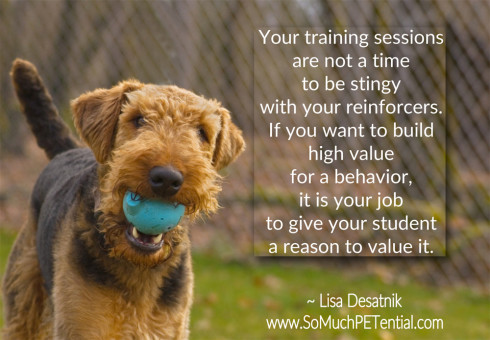 In Your Training, Be Generous With Reinforcement