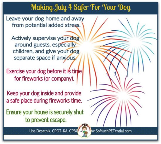 July 4 safety tips for dogs