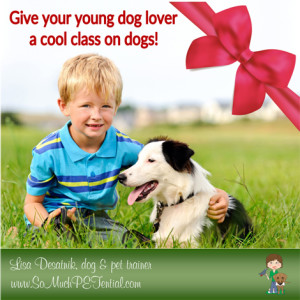 Christmas gift idea for Cincinnati kids who love dogs