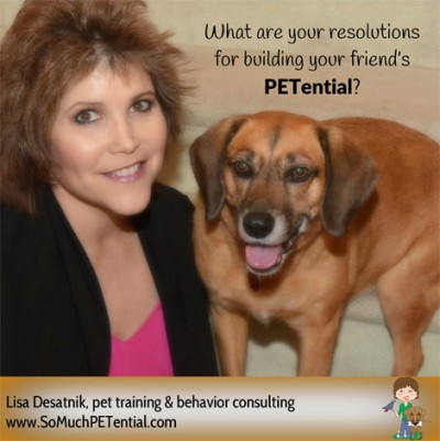 New Year's Resolutions for Dog Training (and parrots and other pets)