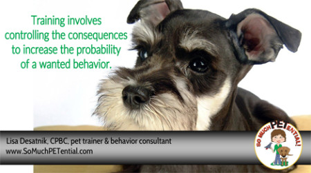 Teaching Behaviors With Consequences