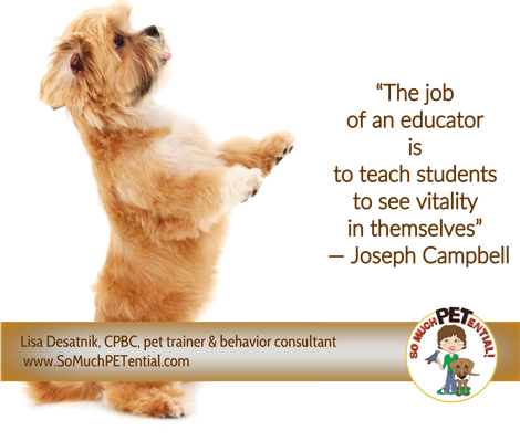 Quote about teachers: The job of an educator is to teach students to see the vitality in themselves