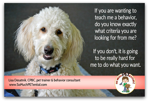 dog and Puppy Training Tip: when training your pet a behavior, know what you want that behavior to look like
