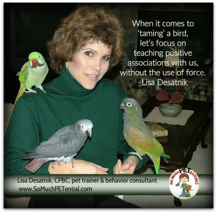 Thoughts by certified parrot behavior consultant, Lisa Desatnik - a dog and parrot trainer in Cincinnati) on taming a pet bird and tips for prevent pet parrot bites