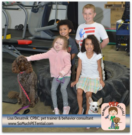 Children in Cincinnati learned how to be good dog friends and dog trainers and dog trainer, Lisa Desatnik's My Dog Super Hero kids class in Blue Ash