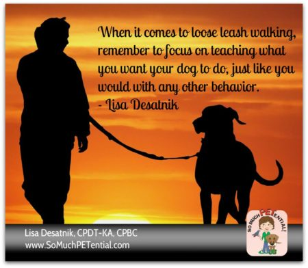 dog training tips for solving dog leash walking problems