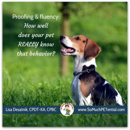 proofing and fluency in dog training