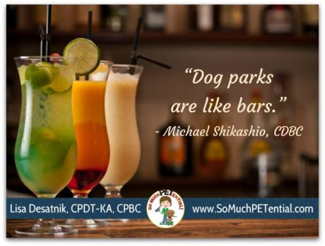 Should you take your dog to a dog park? Cincinnati certified dog trainer has some consideration.