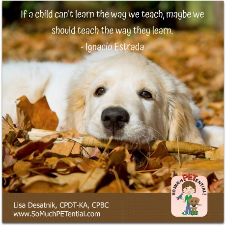 on dog training: If your dog is not getting what you are trying to teach, teach it differently.