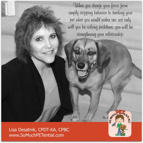 dog training tips for solving behavior problem by Cincinnati certified dog trainer Lisa Desatnik, CPDT-KA