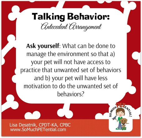 Antecedent Arrangement, or management, and how it can help dog owners solve dog barking out the window problems