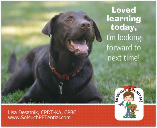 Pete is a Cincinnati Labrador Retriever who has learned a lot through in home dog training with Cincinnati Certified Dog Trainer, Lisa Desatnik, CPDT-KA.