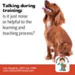 Talking In Dog Training