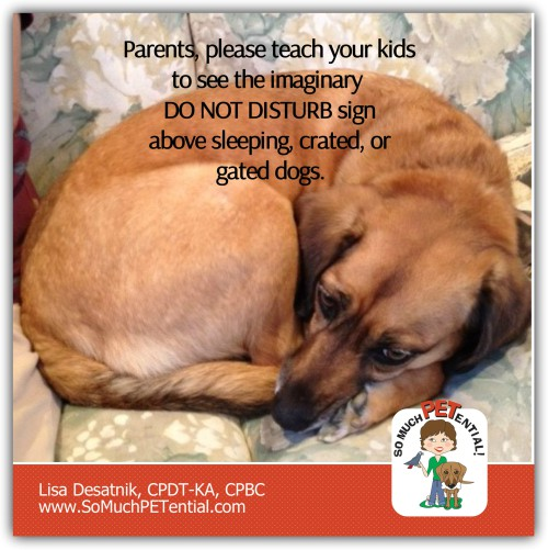 Kids and Dogs: Dog Bite Prevention Tip For Parents
