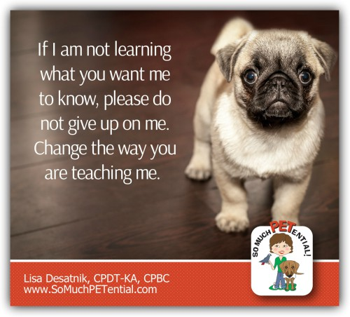 As your dog's trainer, if your dog is not learning what you are teaching, try changing the way you are teaching it.