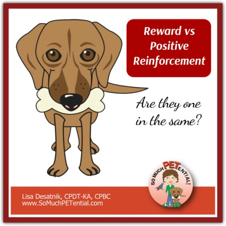 Is a reward and positive reinforcement the same thing in dog training?