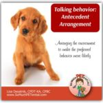 Antecedents And Behavior Change