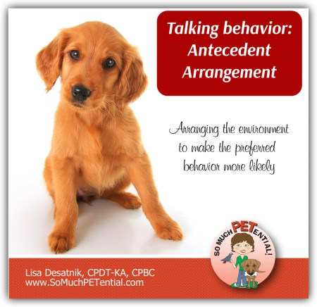 antecedent arrangement in dog training - how to solve dog behavior problems in a positive way