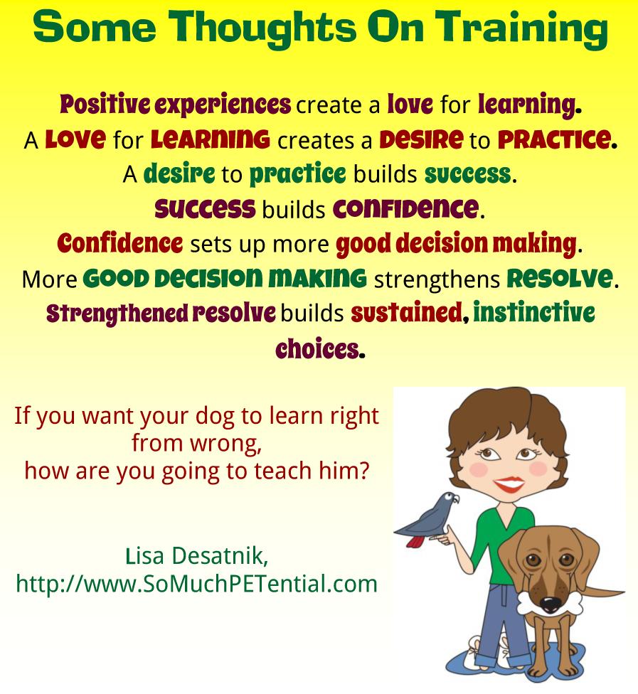 Positive Dog Training Dog Biting