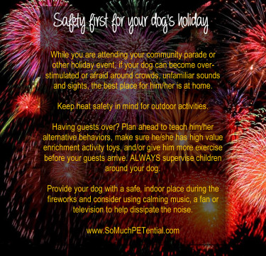 July 4 Safety Tips For Your Dog So Much Petential