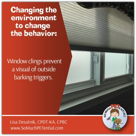 Why you should consider using a window cling if your dog barks excessively out the window by Cincinnati Certified Dog Trainer, Lisa Desatnik, CPDT-KA.